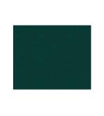 Blaugrün (600405)