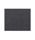 Earl Platin - Metallic (1293010)